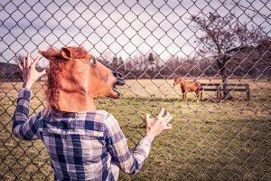 Horse masked man stalking a horse