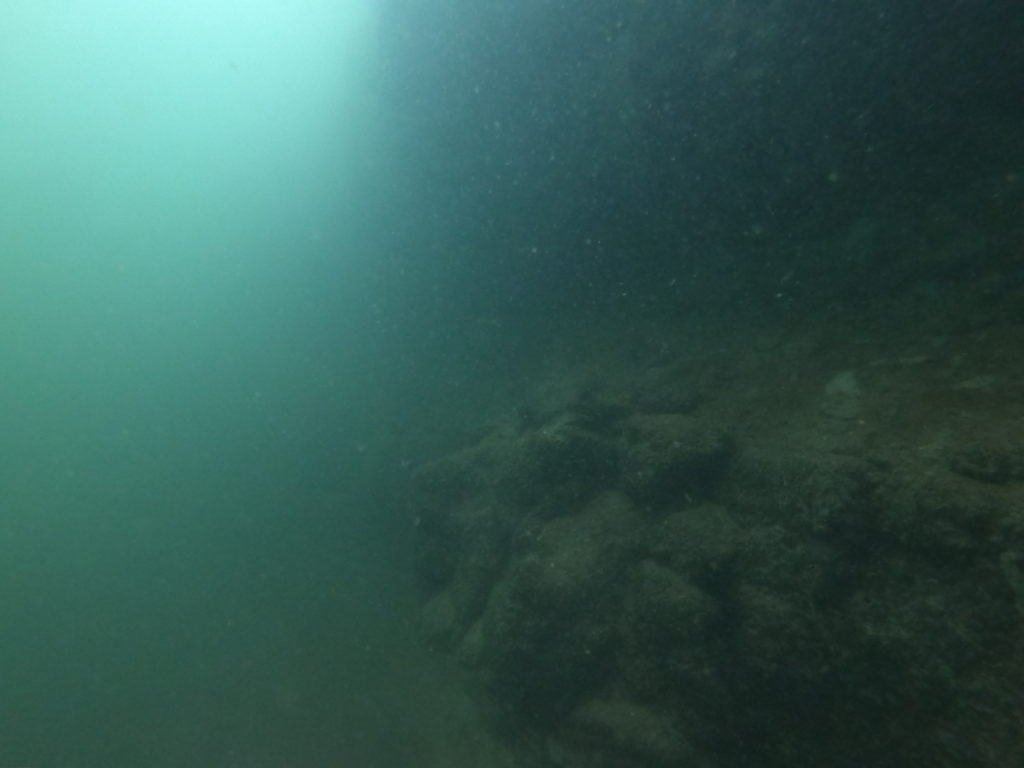 murky bottom of the sea floor?